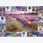 Jigsaw puzzle 1000 pcs - The Smell of Lavender, Assaf Frank (by Schmidt)
