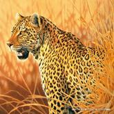 Jigsaw puzzle 1000 pcs - Proud Leopard - Joh Naito (by Schmidt)