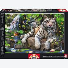 Jigsaw puzzle 1000 pcs - White Bengal Tigers (by Educa)
