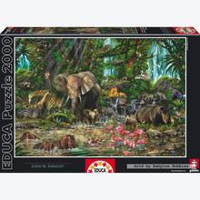 Jigsaw puzzle 2000 pcs - African Jungle (by Educa)