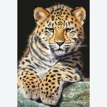 Jigsaw puzzle 500 pcs - Baby Leopard (by Schmidt)