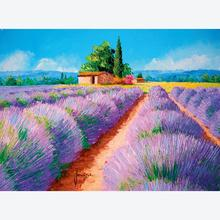 Jigsaw puzzle 500 pcs - Lavender Scent - High Quality Collection (by Clementoni)