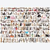 1000 pcs - The World of Cats (by Eurographics)