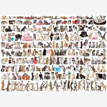 Jigsaw puzzle 1000 pcs - The World of Cats (by Eurographics)