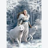 Jigsaw puzzle 1000 pcs - Winter Guardians - Anne Stokes (by Clementoni)