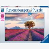 Jigsaw puzzle 1000 pcs - Lavender Fields (by Ravensburger)