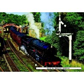 Jigsaw puzzle 500 pcs - All Aboard! - Falcon (by Jumbo)