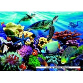 Jigsaw puzzle 1000 pcs - Reef Life (by Jumbo)