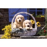 Jigsaw puzzle 1000 pcs - Basket of Puppies - Original (by Ravensburger)