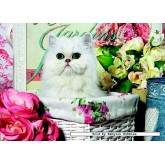 Jigsaw puzzle 1000 pcs - Cat in a Basket (by Jumbo)