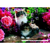 Jigsaw puzzle 500 pcs - Kittens in the Garden (by Jumbo)