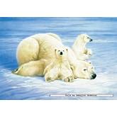 Jigsaw puzzle 1000 pcs - Polar Bears - Joh Naito (by Schmidt)