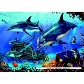 Jigsaw puzzle 1000 pcs - Dolphin Explorers (by Jumbo)