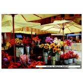 Jigsaw puzzle 3000 pcs - Campo De Fiori - Jan Mclaughlin - Genuine (by Educa)