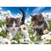 100 pcs - Kitties & Daisies - XXL (by Ravensburger)